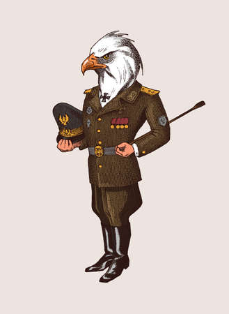 Bald eagle character. Man in military uniform. Hand drawn Engraved old monochrome sketch. Mythical fictional creature in hipster style.