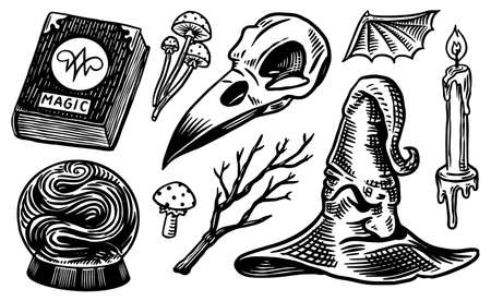 Mystical boho elements. Witchcraft astrological set. Esoteric alchemy religion occult sketch for tattoo or T-shirts. Spellbook, Witches Hat, Bird Skull, Magic Ball. Drawn Engraved vector illustration. Illustration