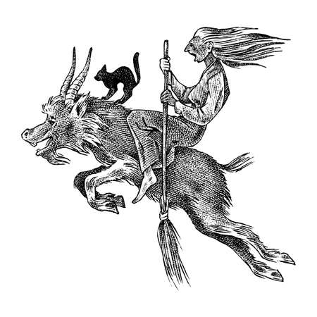 Witch flies with a broom and a goat. Ancient mythical Magic character. Engraved monochrome sketch. Hand drawn vintage old Fortune illustration.