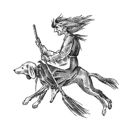 Witch flies with a broom and a dog. Ancient mythical Magic character. Engraved monochrome sketch. Hand drawn vintage old Fortune illustration.