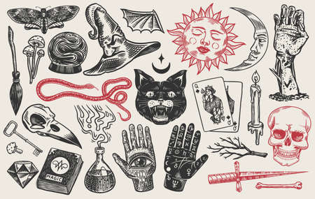 Mystical magic boho elements. Witchcraft astrological set. Esoteric alchemy sketch for tattoo. Palmistry and skull, the hand of a dead man. Drawn Engraved Game Cards and Black Cat.