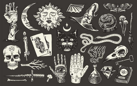 Mystical magic boho elements. Witchcraft astrological set. Esoteric alchemy sketch for tattoo. Drawn Engraved Game Cards and Black Cat and Palmistry.