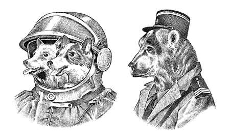 Dogs astronauts in a spacesuit. Bear in military style. Fashion Animal character label. Hand drawn sketch.