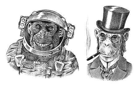 Monkey astronaut and gentleman with a cigar. Chimpanzee Spaceman dressed in Suit. Fashion Animal character. Hand drawn sketch.