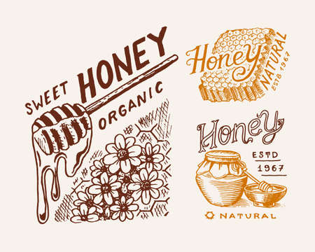 Honey and honeycombs, bee labels. Vintage  typography, shop or signboards. Badge for t-shirts. Hand Drawn engrave sketch. Vector illustration. 向量圖像