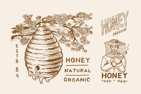Honey and bees. Beekeeper man and Honeycombs. Vintage   typography, shop or signboards. Badge for t-shirts. Hand Drawn engrave sketch. Vector illustration.
