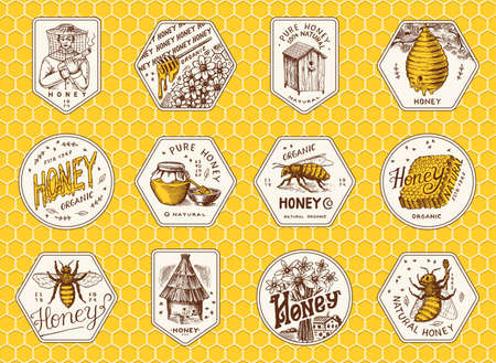 Honey and bees stickers set. Beekeeper man and Honeycombs and hive and apiary. 向量圖像