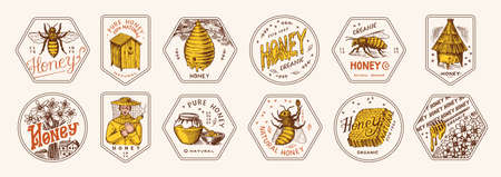 Honey and bees stickers set. Beekeeper man and Honeycombs and hive and apiary. Vintage typography, shop or signboards. Badge for t-shirts. Hand Drawn engrave sketch. Vector illustration.