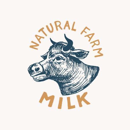 Milk label. Vintage Cow logo for shop. Badge for t-shirts. Hand Drawn engrave sketch. Vector illustration Vettoriali