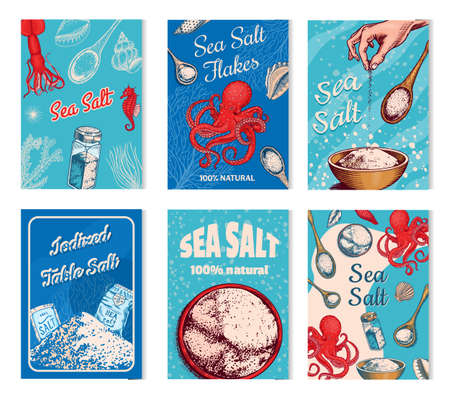 Sea salt posters and banners. Vintage labels. Octopus and squid, wooden spoons, powdered powder, spice in the hand. Engraved hand drawn sketch background