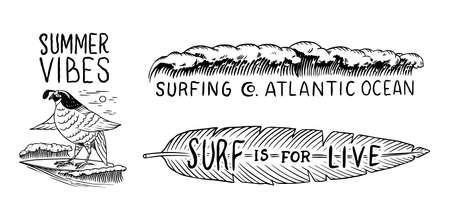 Surf badge, Vintage Surfer logo. Retro Wave and Bird and tropical leaf. Summer California. Engraved emblem hand drawn. Banner or poster.