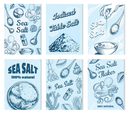 Sea salt posters and banners. Vintage labels. Octopus and squid, wooden spoons, powdered powder, spice in the hand. Engraved hand drawn sketch background.