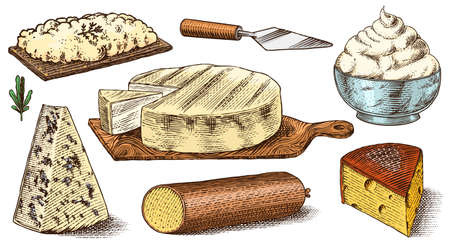 Cheese set. Slices of Mascarpone Bleu de Gex Edam Camembert Mozzarella for market or grocery store. Cheeseboard and Fresh organic milk. Vector Engraved hand drawn sketch for label, poster or menu.