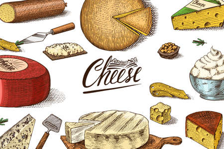 Cheese Poster or banner. Slices of Edam and Mozzarella for market or grocery store. Cheeseboard and Fresh organic milk background. Vector Engraved hand drawn sketch for label or menu. Vettoriali