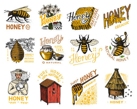 Honey and bees set. Beekeeper man and Honeycombs and hive and apiary. Vintage  for typography, shop or signboards. Badge for t-shirts. Hand Drawn engrave sketch. Vector illustration.