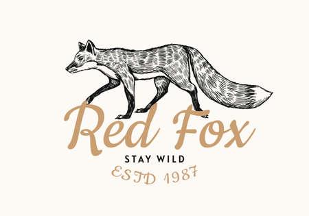 Red fox badge. 일러스트
