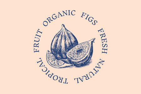Fresh fig badge. Fruit Foliage label. Cut pieces. Detox spice. Vector Engraved hand drawn sketch for stamp, t-shirt or typography or menu.