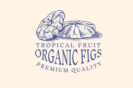 Fresh fig badge. Dried fruit Foliage label. Cut pieces. Detox spice. Vector Engraved hand drawn sketch for stamp, t-shirt or typography or menu. 일러스트