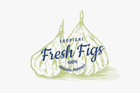 Fresh fig badge. Dried fruit Foliage label. Detox spice. Vector Engraved hand drawn sketch for stamp, t-shirt or typography or menu. 일러스트