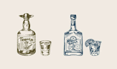 Bottle of tequila Glass shot with lime and label for retro poster or banner. Mexican drink. Engraved hand drawn vintage sketch. Woodcut style. Vector illustration.