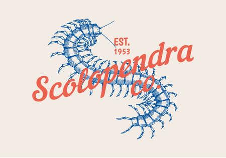 Vintage Scolopendra label for bar or tattoo studio. Emblems badges, t-shirt typography. Engraved Vector illustration.