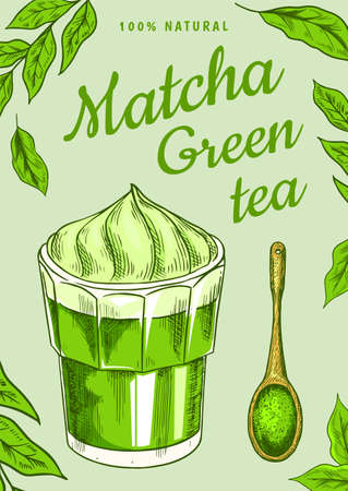 Matcha green tea poster. Healthy milk latte. Japanese ceremony banner. Engraved hand drawn Vintage sketch for menu or book.
