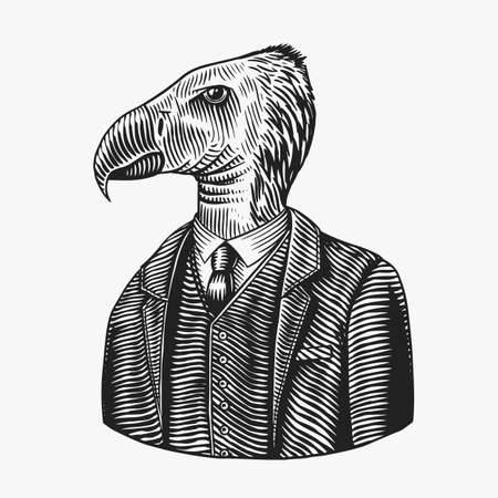 California condor gentleman. American Bird in costume. Fashion animal character. Hand drawn vintage sketch. Vector engraved illustration for logo, label and tattoo or T-shirts. Logó