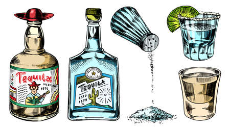 Tequila bottles and salt shaker. Glass Shots with Alcoholic Drink and Lime. Engraved hand drawn vintage sketch. Woodcut style. Vector illustration for menu or poster. Vector Illustratie