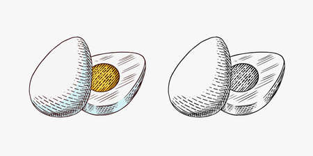 Boiled Egg with Protein and Yolk for breakfast. Farm product. Engraved hand drawn vintage sketch. Woodcut style. Vector illustration for menu or poster.