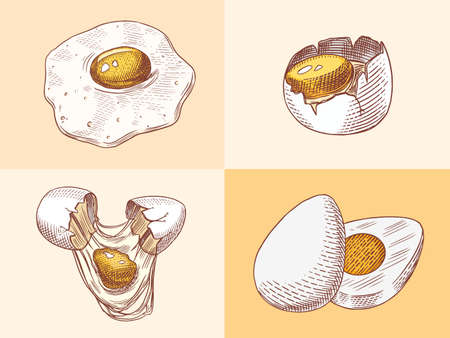 Eggs and and yolk, scrambled omelette, shell and farm product. Engraved hand drawn vintage sketch. Woodcut style. Vector illustration for menu or poster.