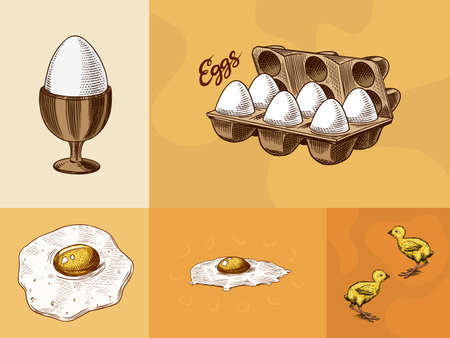 Eggs and and yolk, scrambled omelette, shell and farm product, Chicken and packaging. Engraved hand drawn vintage sketch. Woodcut style. Vector illustration for menu or poster.