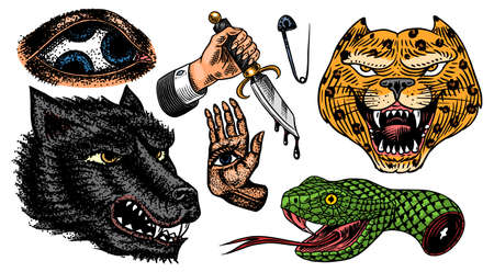 Set of Fashion patches. Tattoo artwork. Mystical magic hand. and snake. Esoteric Dagger, Leopard and wolf. Engraved hand drawn vintage sketch. Vector surreal illustration, badges, print for t-shirt. Stock Illustratie