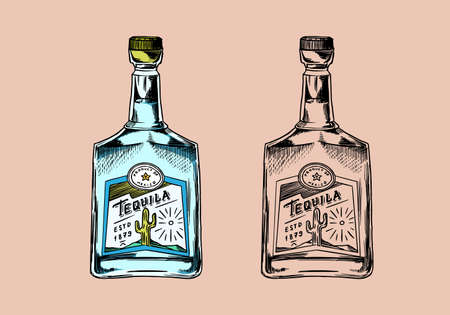 Glass Bottle with strong drink. Vintage Mexican tequila badge. Alcoholic Label for poster banner. Hand Drawn engraved sketch for t-shirt.