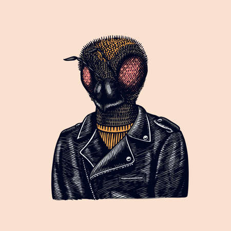 Bee biker. Fly in a leather jacket. Fashion insect character. Hand drawn sketch. Vector engraved illustration for logo, label and tattoo or T-shirts.