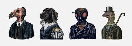 Dog officer and bird and Bee biker. Fashion animal characters. Hand drawn sketch. Avatars for web or banners or templates.