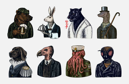 Grizzly Bear with a beer mug. Octopus sailor and Hare or Rabbit waiter. Dog officer and bird. Black panther and Bee biker. Japanese text means: karate. Fashion animal character. Hand drawn sketch. Stock Illustratie
