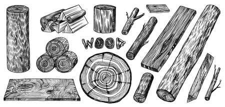 Wood set. Planks and logs, lumber and Cuts, Firewood in vintage style. Pieces of Tree. Campfire material. Engraved Hand drawn sketch.
