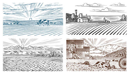 Rural meadow. A village landscape with cows, hills and a farm. Sunny scenic country view. Hand drawn engraved sketch. Vintage rustic banner for wooden sign. Vector Illustratie