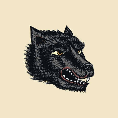 Screaming mad wolf for tattoo or label. Roaring beast. Animal in retro style. Engraved hand drawn line art Vintage old monochrome sketch. Vector illustration.