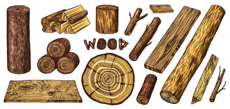 Wood set. Planks and logs, lumber and Cuts, Firewood in vintage style. Pieces of Tree. Vector illusion for signboard, labels, logo or banner. Campfire material. Engraved Hand drawn sketch. Illustration