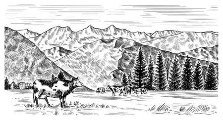 Rural meadow. A village landscape with cows, hills and a farm. Sunny scenic country view. Hand drawn engraved sketch. Vintage rustic banner for wooden sign or badge or label.