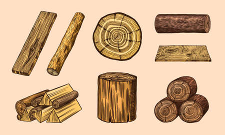 Wood set. Planks and logs, lumber and Cuts, Firewood in vintage style. Pieces of Tree. Vector illusion for signboard, labels, logo or banner. Campfire material. Engraved Hand drawn sketch.
