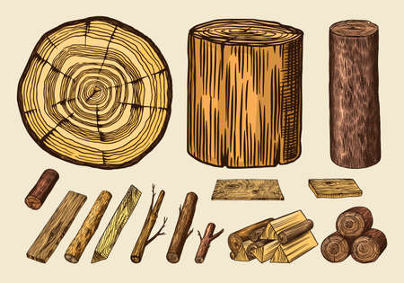 Wood set. Planks and logs, lumber and Cuts, Firewood in vintage style. Pieces of Tree. Vector illusion for signboard, labels, logo or banner. Campfire material. Engraved Hand drawn sketch. Logo