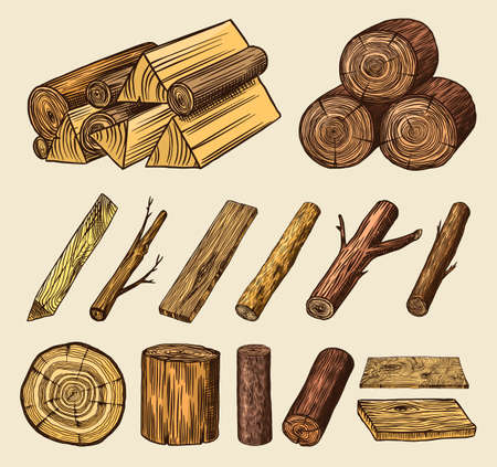 Wood set. Planks and logs, lumber and Cuts, Firewood in vintage style. Pieces of Tree. Vector illusion for signboard, labels, logo or banner. Campfire material. Engraved Hand drawn sketch. Ilustração