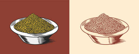 Mustard seeds or Spicy condiment. Dip or dipping sauce. Illustration for Vintage background or poster. Engraved hand drawn sketch. Ilustrace
