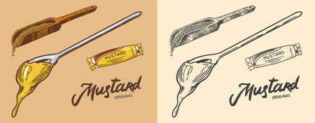 Dripping Mustard or Spicy Hot condiment. Splashing liquid. Sauce and seeds on a spoon. Illustration for Vintage background or poster. Engraved hand drawn sketch.
