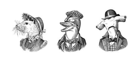 Dolphin and White Mouse and Great hammerhead shark in hat and suit. Victorian lady or woman and man. Fashion animal character. Engraved illustration for logo and T-shirts or tattoo. Hand drawn sketch.