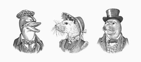 Seal and White Mouse and Dolphin in hat and suit. Victorian woman and man. Marine mammal. Fashion animal character. Hand drawn sketch. Engraved illustration for T-shirts or tattoo