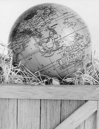 globe Banco de Imagens - 1896327