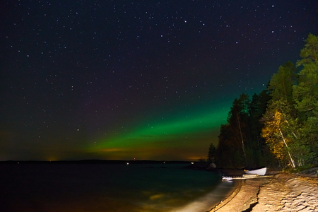 Aurora borealis. Northern lights in dark sky with clouds. Trees on a foreground. Copy space.